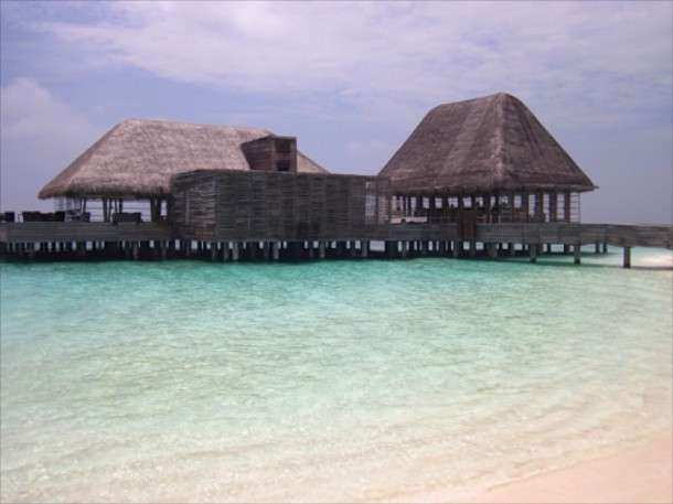Maldivas hotel fish