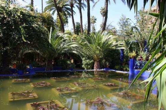 Marrakech Jardim Majorelle 4