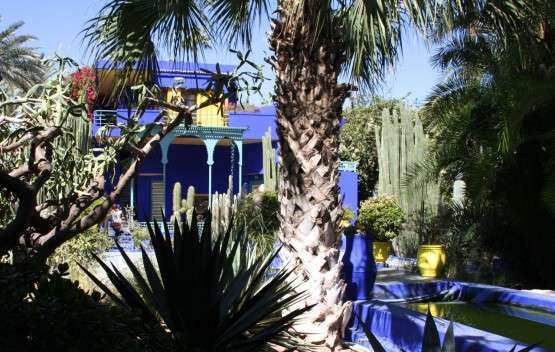 Marrakech Jardim Majorelle 5
