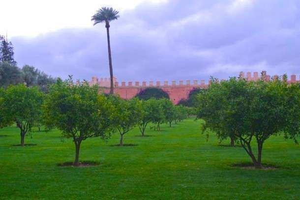 A Marrakech 1 (23)