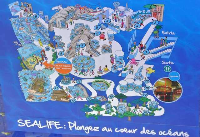 Paris Outlet infantil aquario