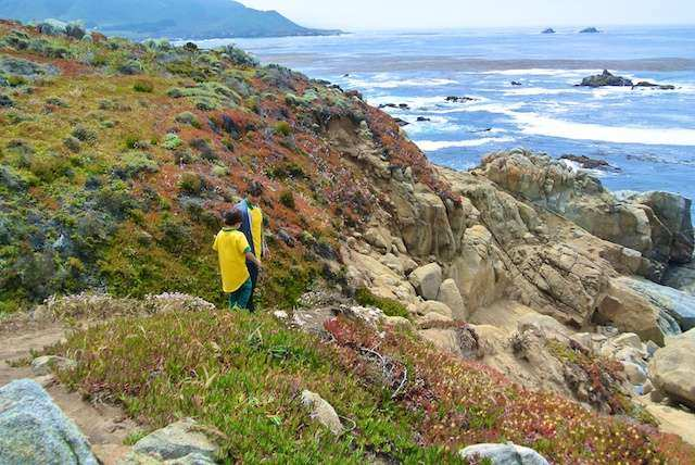 CA Big Sur Kids 7