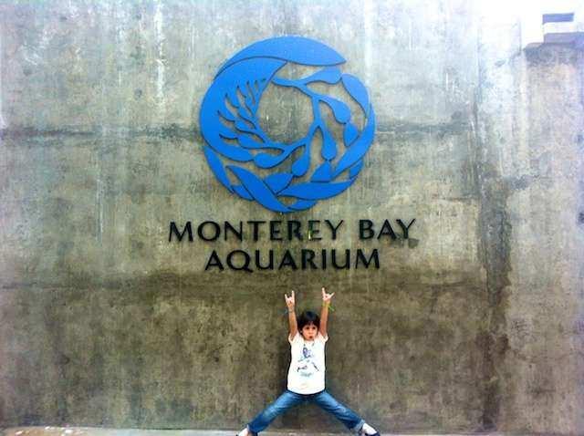 CA Monterey P 2