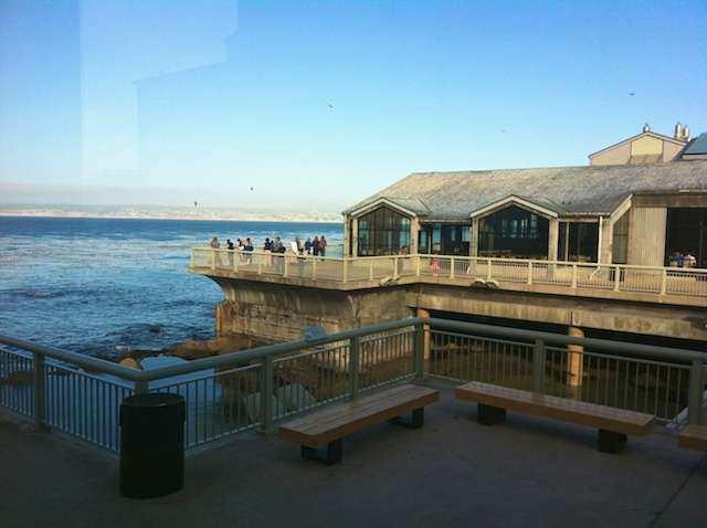 CA Monterey P 3