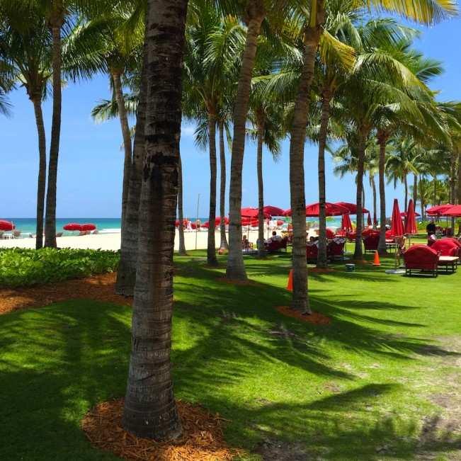 Miami ACQUALINA JARDIM
