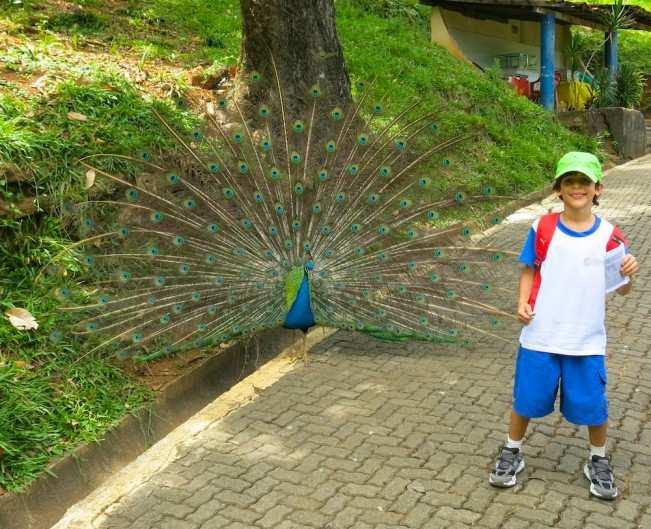 Salvador Kids 2 (1)